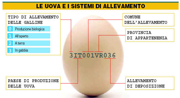 Etichettatura Uovo