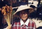 Fiume Mekong