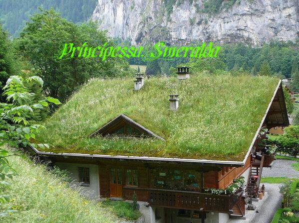 News i giardini sui tetti su il bo - Giardino sul tetto ...