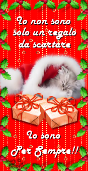 //digilander.libero.it/StefyGrafica/My%20creation/Christmas/box%20xmas%20non%20mi%20abbandonare%20cat.png