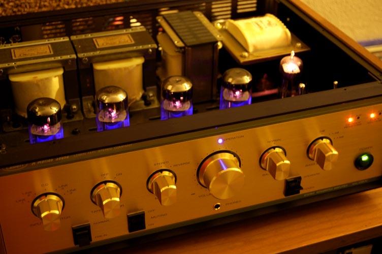 Leben Cs 600 Power Amp