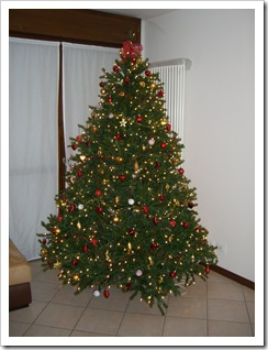 Albero di Natale 2007