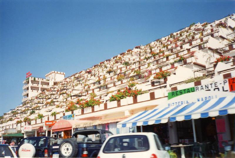 Fuerteventura for Terrazzi fioriti