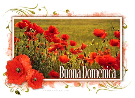 http://digilander.libero.it/basilissalaura/DEDICHE/BUONA%20DOMENICA%20CON%20PAPAVERI.jpg