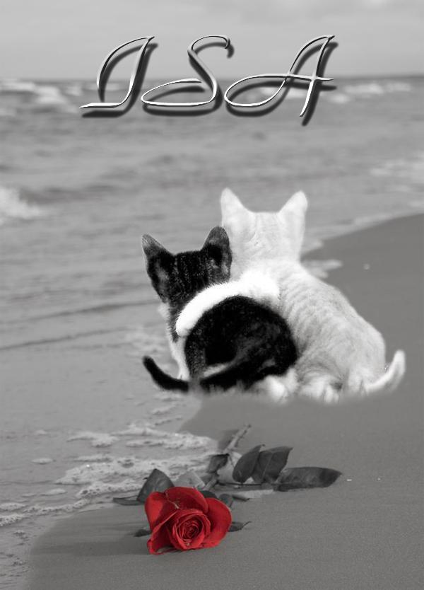DOMENICA 4 OTTOBRE - Pagina 11 Rosa%20spiaggia%20mici%20ISA