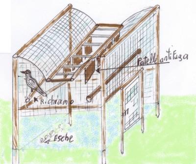 Cornacchia for Trappola piccioni