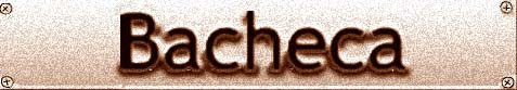 Risultati immagini per SCRITTA BACHECA