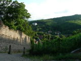 Ribeauvillè: il paese è assolutamente gradevole e caratteristico dell'Alsazia