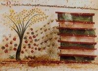 >>L'elogio delle api produttrici della cera