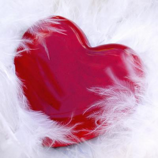 cuore piume