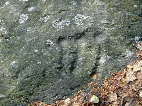 Frazioni di San Siro ed incisioni rupestri