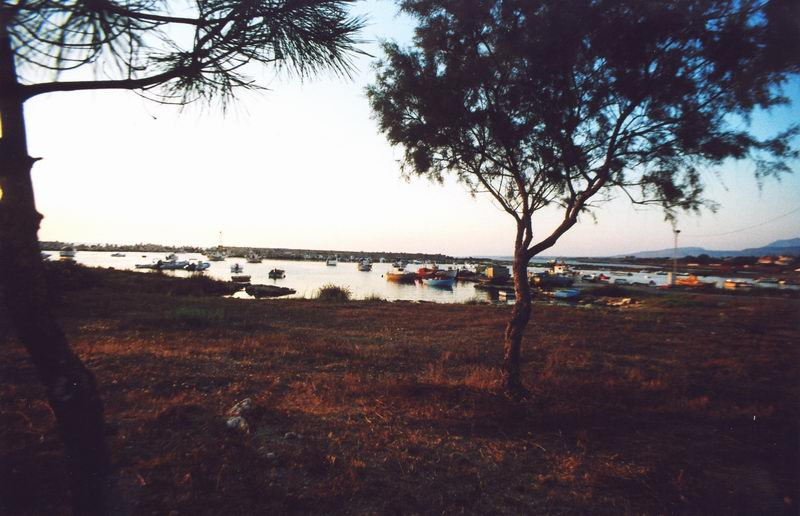 Marathopoli - Il porto