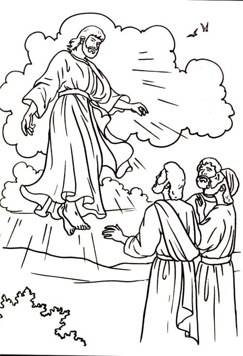 Nel giardino degli angeli catechismo disegni for Immagini sacre da colorare