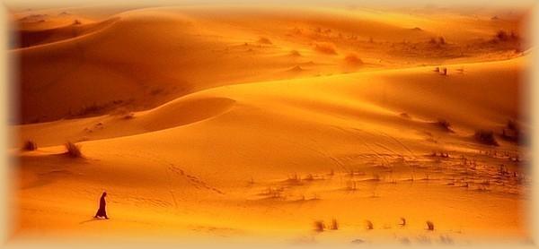 Nel Deserto di Gesù Nel Deserto