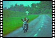 analysis of easy rider movie
