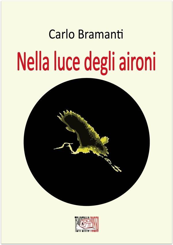"""""""Nella luce degli aironi"""", romanzo"""