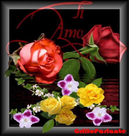 fiori per ogni occasione Fiorepassionegrillo