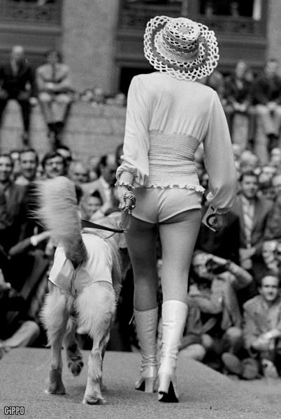 Australia Dog Boots