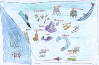 Sulla costa tra la vegetazione vivono animali selvatici for Mammiferi che vivono in acqua