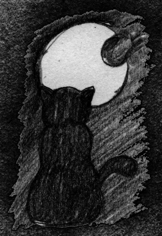 miao moon
