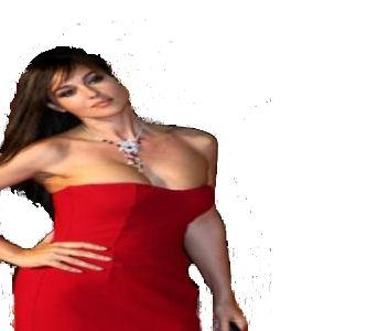 Monica ripulita