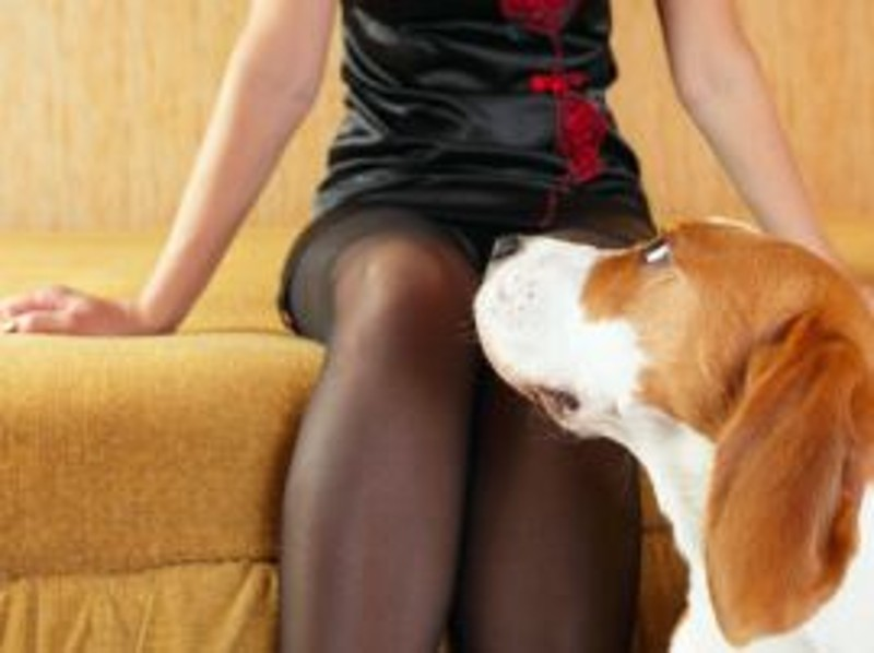 video porno e sesso meticc