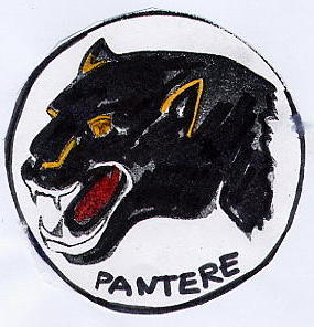 La Squadriglia Pantere (Pietrasanta 1) ci presenta i reparti della nostra Zona (Area Costa)
