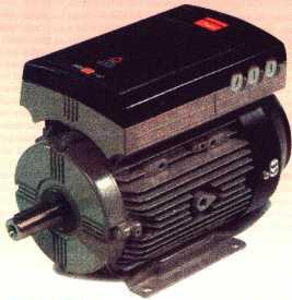 Motori elettrici for Lavatrici con motore inverter