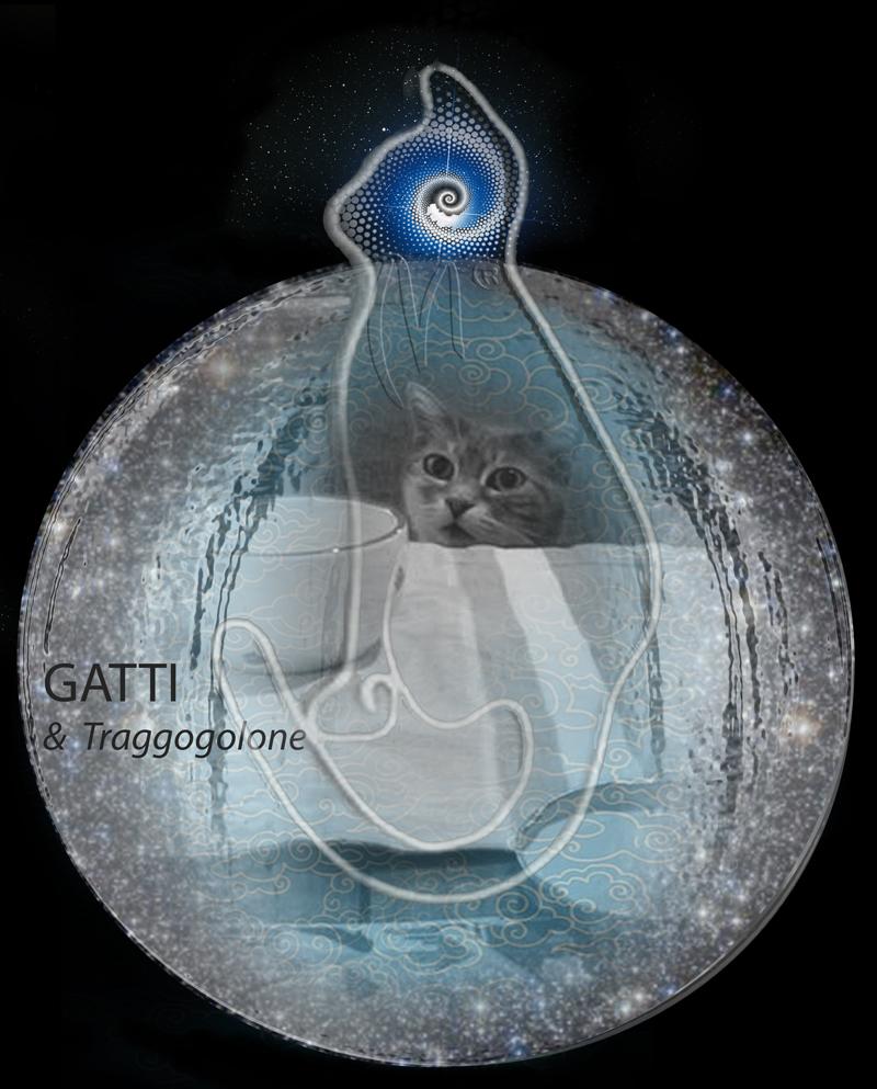 6 Balls DigYtando: Gatti