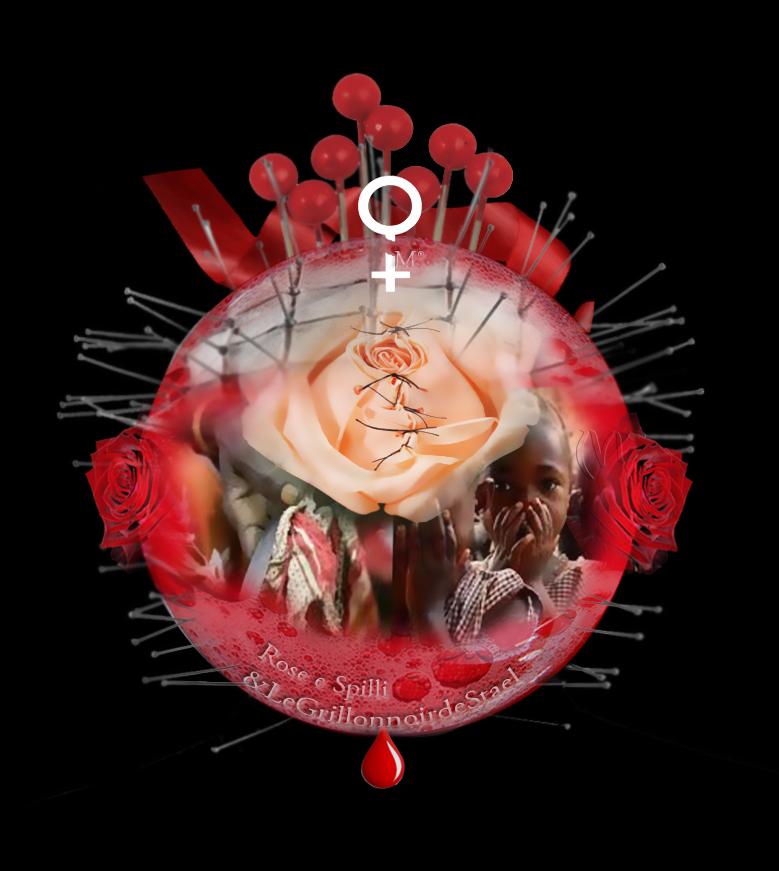 BALL: Rose e Spilli/NO all'INFIBULAZIONE