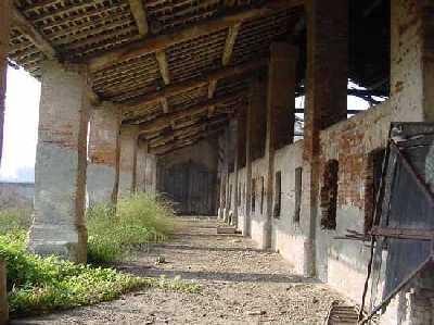 Motta baluffi in pericolo di estinzione for Come aggiornare le colonne del portico anteriore