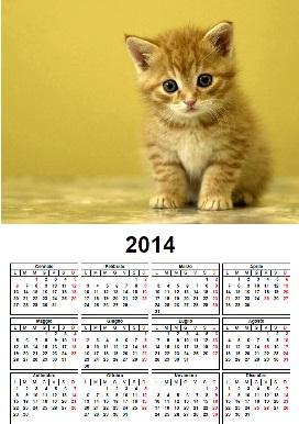 Calendario 2014 gatto