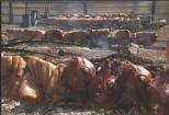 La Cucina di Osini - gli arrosti di carne