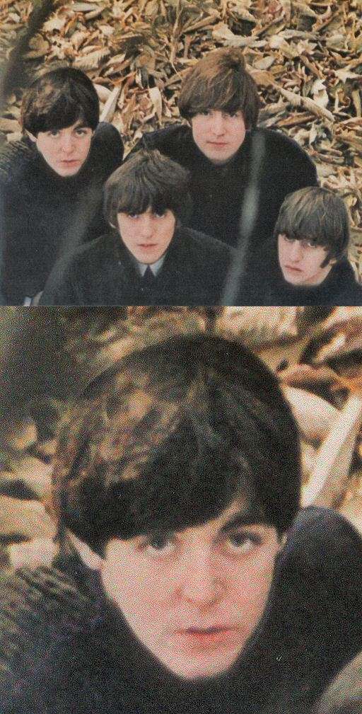 I Have Always Wondered Why Paul Head Was BAD Cropped And Replaced In Beatles For Sale Back Cover