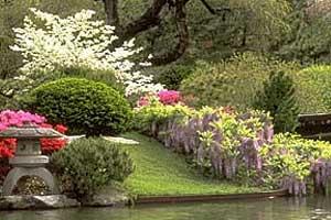 Giardini giapponesi for Giardini in miniatura giapponesi