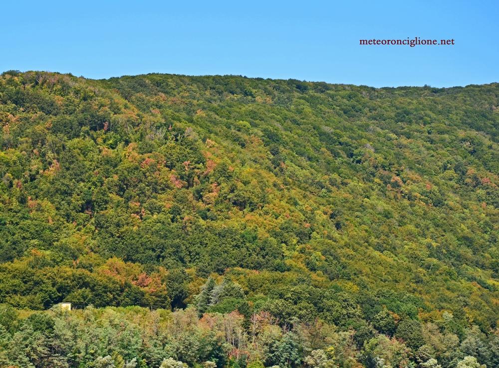 Ronciglione - Scorcio di Monte Fogliano