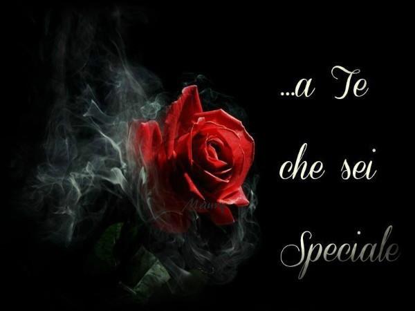 http://digilander.libero.it/romina050/R05/da%20maury%20tok%20tok.jpg