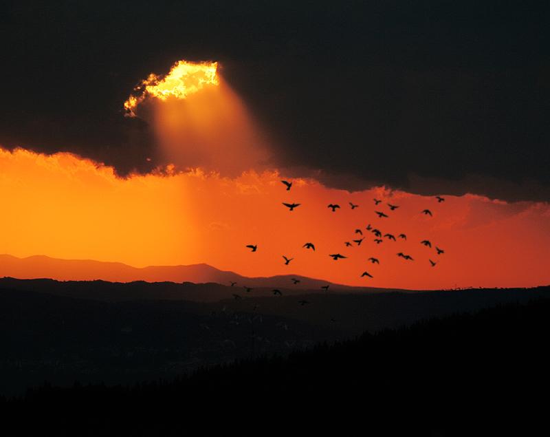 http://digilander.libero.it/scricciolo68lbr/vita-luce-oltre.jpg