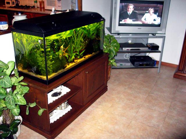 Foto mobile acquario scalari acquariforum for Mobile per acquario
