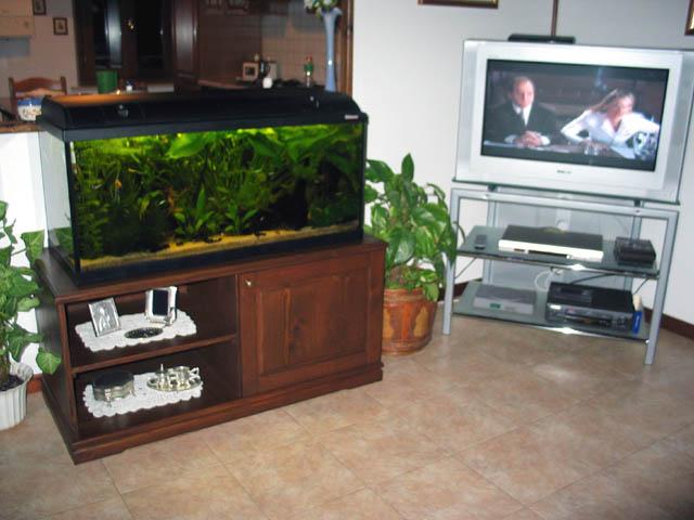 Foto mobile acquario scalari acquariforum - Acquario mobile ...
