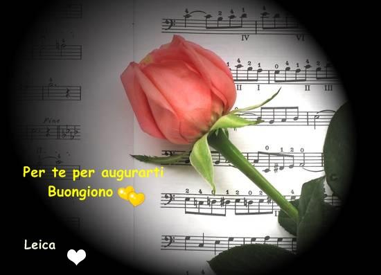 MUSICA NEL CUORE Su MUSICA NEL CUORE