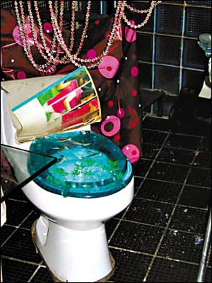 Cameriere dov 39 il bagno veramente signore lei - Cacca nel bagno ...