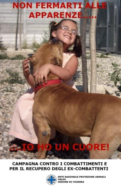 Frasi Sui Cani Pitbull.Rottweiler Pitbull Urlo Contro Il Razzismo Canino
